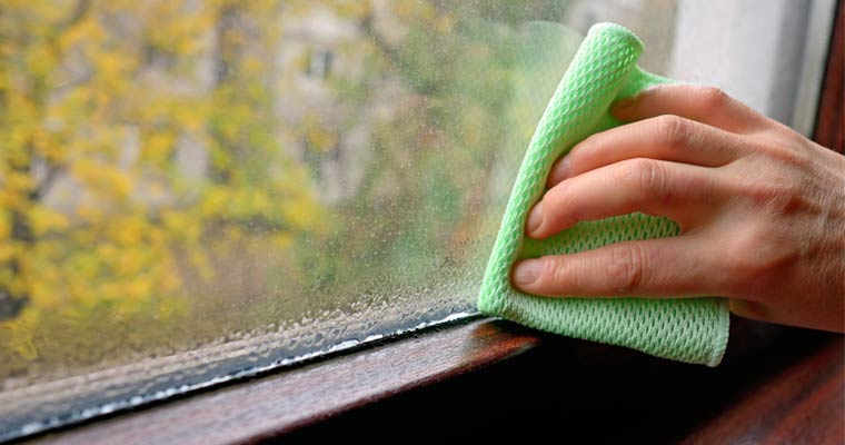 Wiping Window Condensation